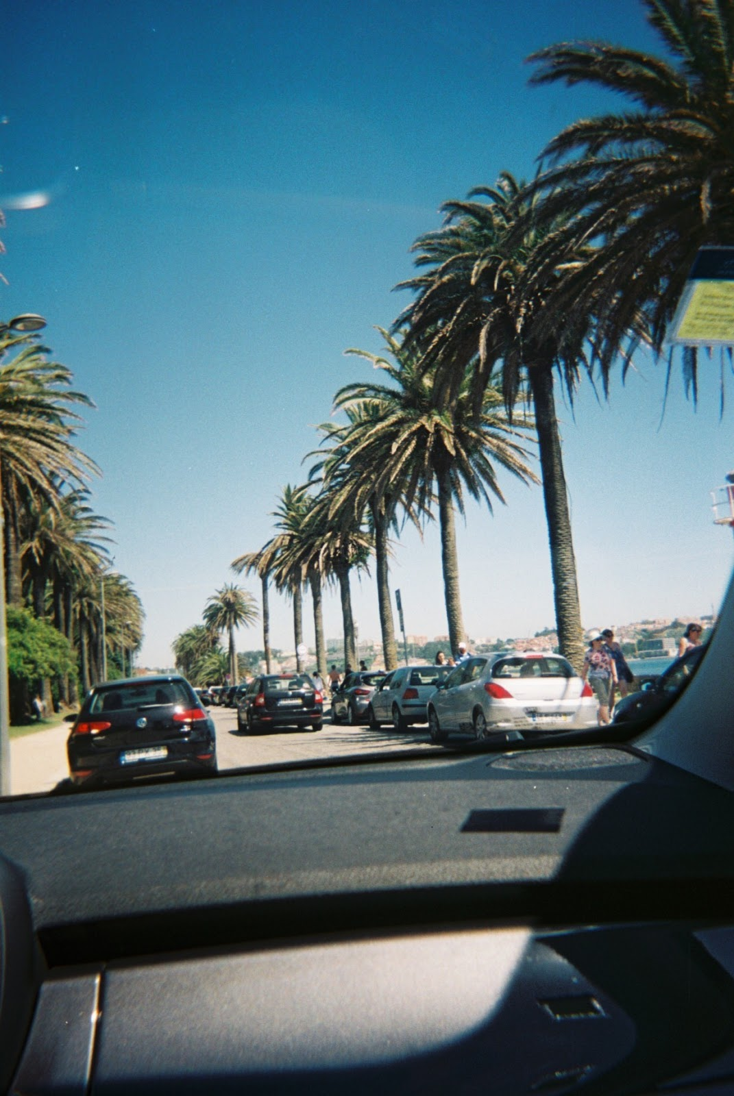 Disposable Series #10