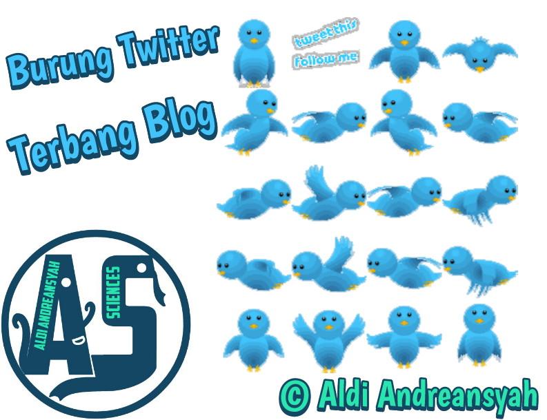 burung twitter terbang