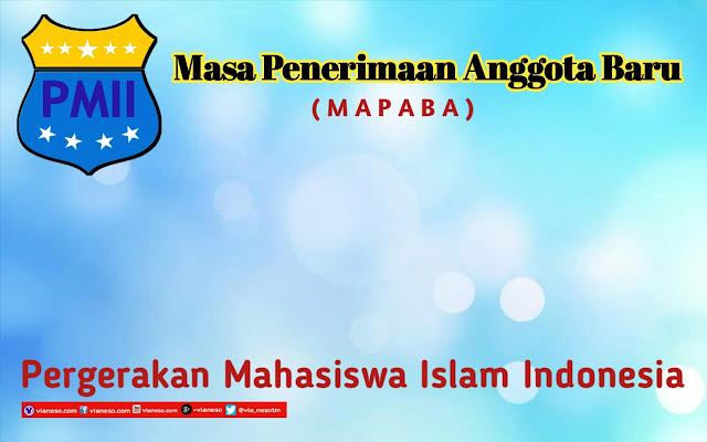 Mapaba pmii