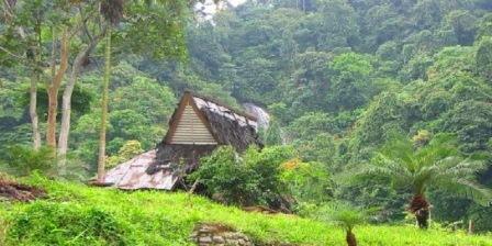 bukit lawang Kata kunci (menurut relevansi) lawang  jungle inn bukit lawang  hotel bukit lawang  wisata bukit lawang  bukit lawang accommodation  bukit lawang hotel
