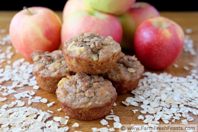 Chunks of apples mixed with buttermilk-soaked oats in a whole wheat muffin, topped with streusel for a sweet and wholesome treat.