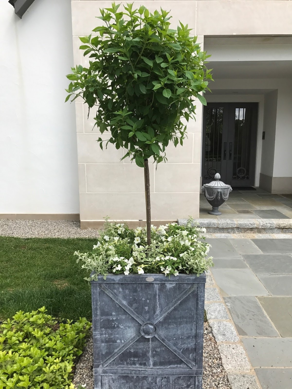 Outdoor planter ideas rambling renovators for Yard planter ideas