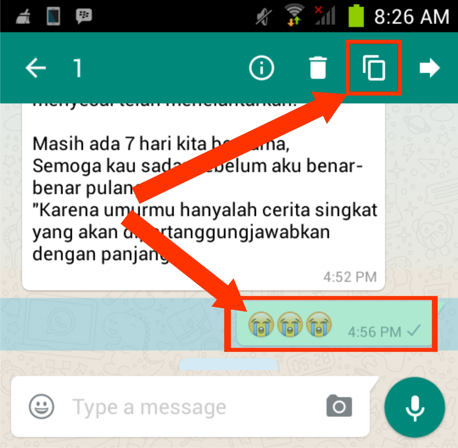 how to add a caption in whatsapp android