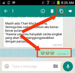 Cara Melakukan Copy-Paste pada Aplikasi WhatsApp di Android /iOS (Apple)