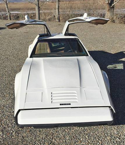 Daily Turismo: 1974 Bricklin SV1