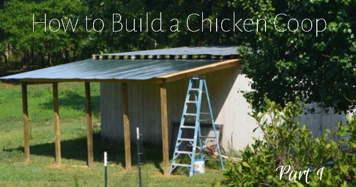 How To Build A Chicken Coop Part 1 Homesteading On Grace