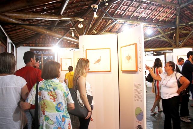 """Exposição """"Aves – Ilha Comprida"""" prossegue até 10 de fevereiro no Espaço Cultural"""