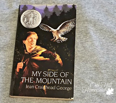 """My Side of the Mountain"" by Jean Craighead George will inspire your child's or grandchild's imagination."