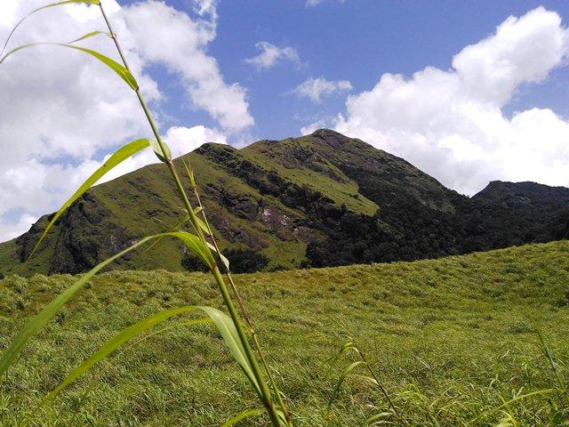 Chembra Peak Trekking