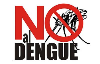 ¿Qué es el Dengue?