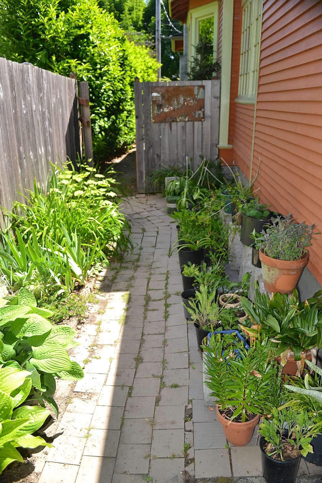 Landscaping Ideas For Narrow Side Of House - Landscape Ideas on Narrow Yard Ideas id=16580