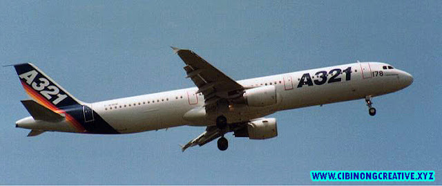 "'Pesawat Airbus A321 tidak diserang dari luar' || ""The Airbus A321 was not attacked from the outside '"