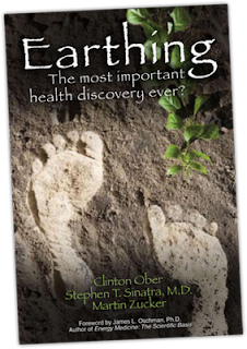 Earthing, The Most Important Health Discovery Ever? by Clinton Ober book cover