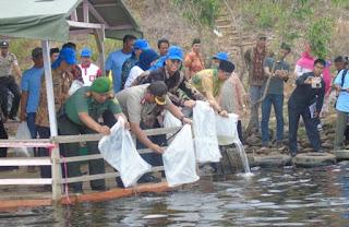 Pemerintah Musi Rawas Tebar Ratusan Ribu Benih Ikan di Danau Gegas