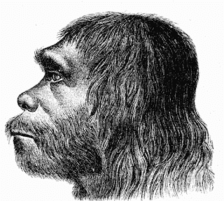 Neanderthaler, November 30, 1974,  DISCOVERED The so called missing link. Lucy. Lucy Fails Test As Missing Link  Atheist Missouri lecture misrepresented the evidence to con atheists to make money from this hoax.