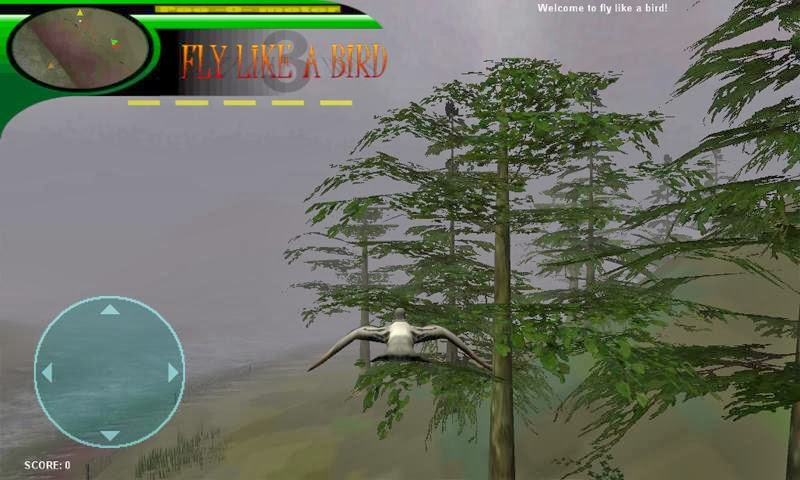Play Fly Like A Bird 2 | Play Free Addicting Games Online