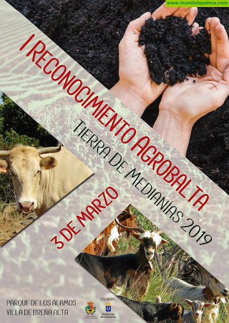 El Ayuntamiento de Breña Alta celebrará este domingo el 'Agrobalta 2019, Tierra de Medianías'