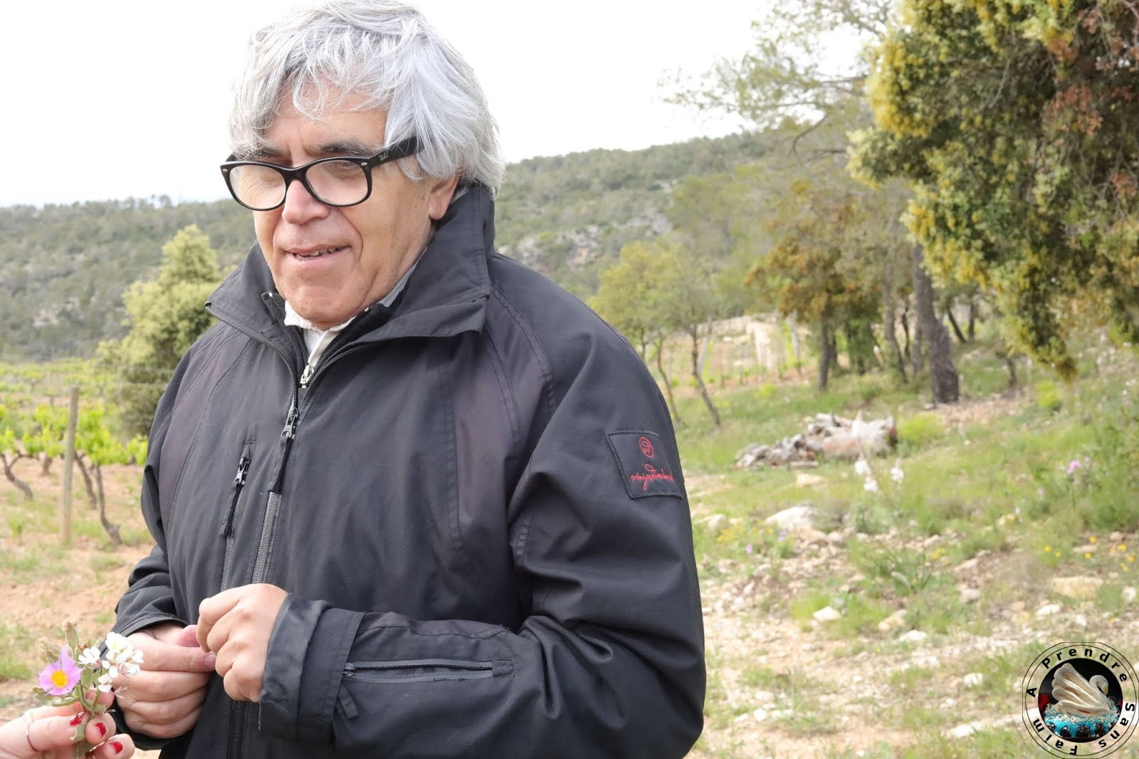 Visite et dégustation de vins à Vinyes Domènech - Capçanes
