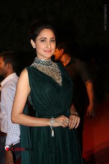 Actress Pragya Jaiswal Stills in Green Long Dress at Gemini TV Puraskaralu 2016 Event  0005.JPG