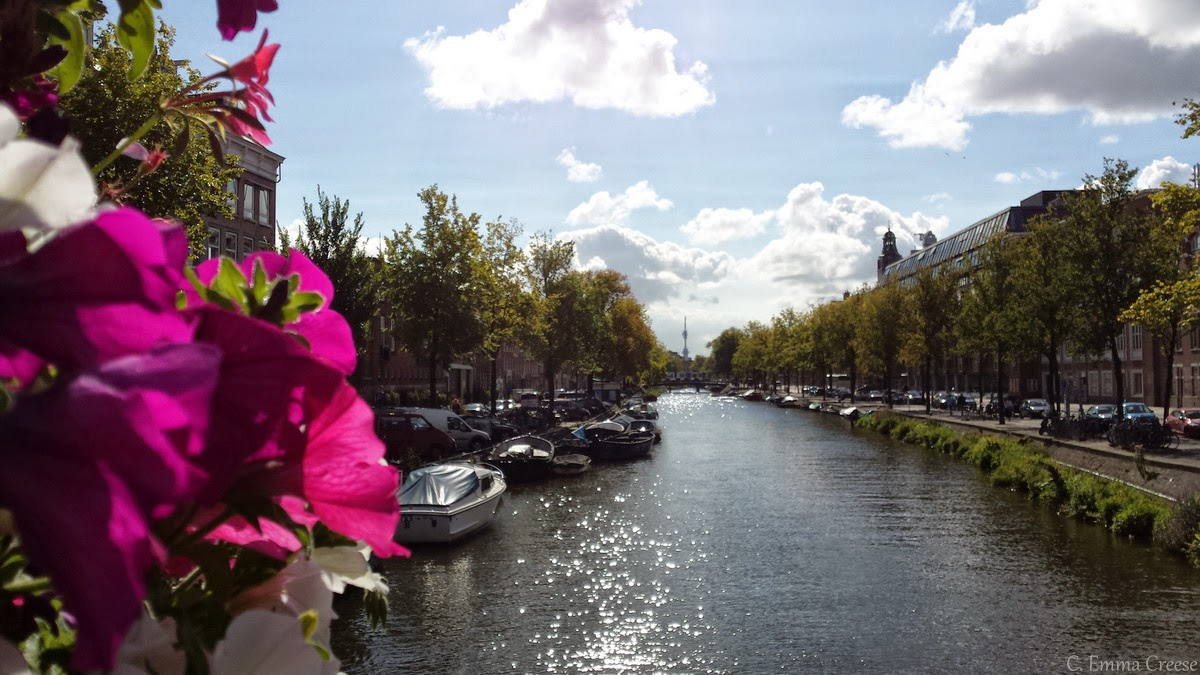 Where to stay in Amsterdam, and a few cool places to visit