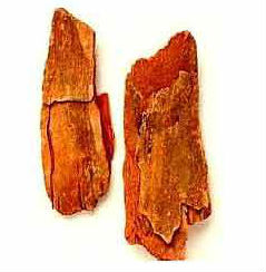 विजयसार,marsupium wood for diabetes,vijasar wood benefits in diabetes,vijasar wood benefits in diabetes,ayurvedic treatment for diabetic patients