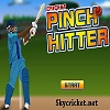 Play Cricket pinch hitter game