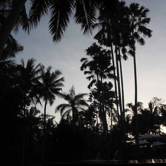 ubud bali sunset