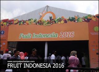 """Hari pertama Fruit Indonesia 2016, """"Monas"""" menjadi primadona"""