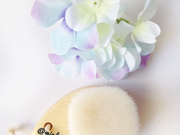 [Review] Pore Brush from Sparkling Gee