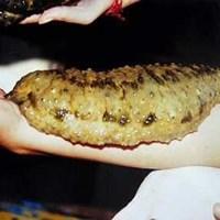 Obat Oles Untuk Menyembuhkan Kulit Bersisik Dan Gatal