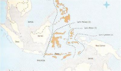 Menelusuri Sejarah Peradaban Awal Indonesia Dengan Mempelajari Bagaimana Proses Terjadi dan Terbentuknya Kepulauan di Indonesia