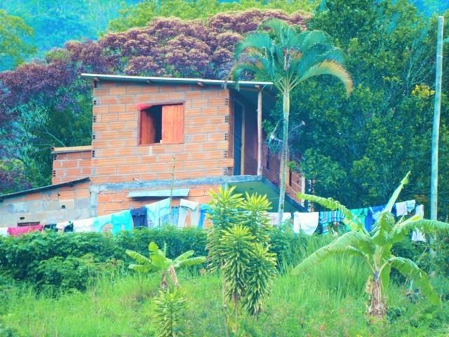 casa de ladrillo en el campo construcción naturaleza