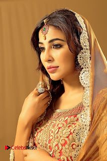 Actress Parvathi Nair Latest Picture Shoot Gallery  0002