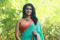 Tanya Ravichandran ~  Exclusive Celebrities Galleries 003.JPG