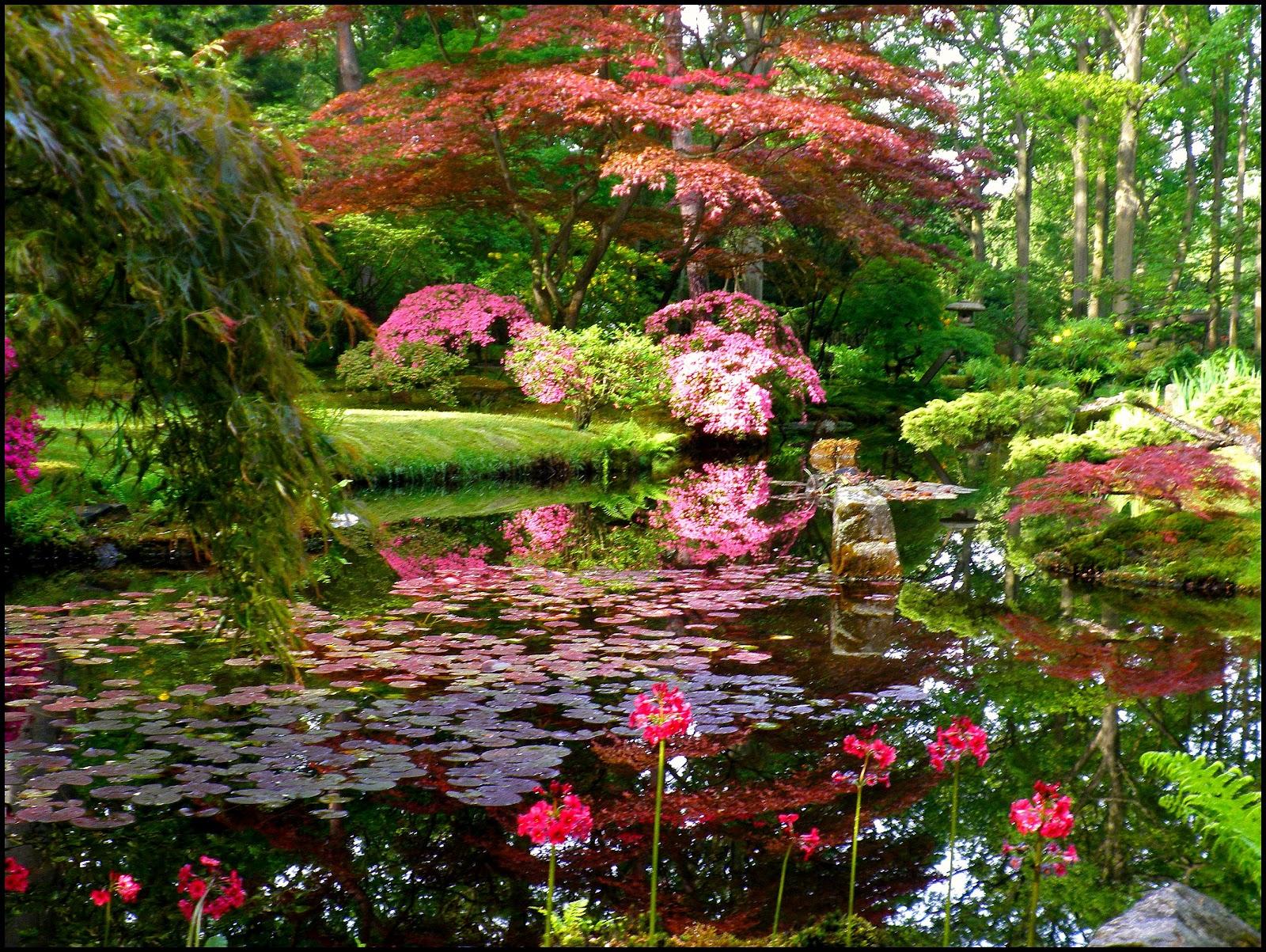 Japanese Zen Garden: Japanese Garden