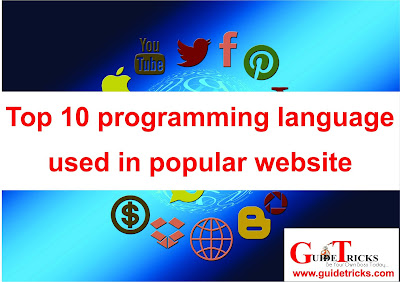 Top 10 programming language used in popular website