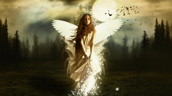 Rise on an Angel Wallpaper HD 1080p