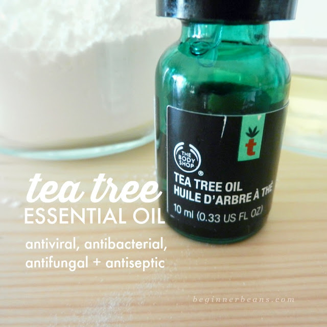 Benefits of tea tree essential oil and why + how to use it in homemade deodorant