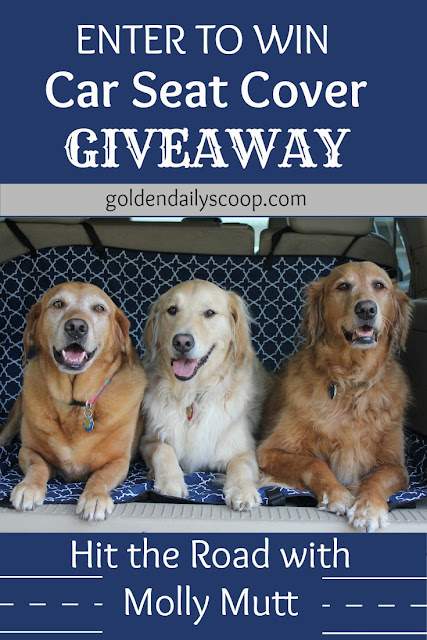a giveaway for a molly mutt car seat cover