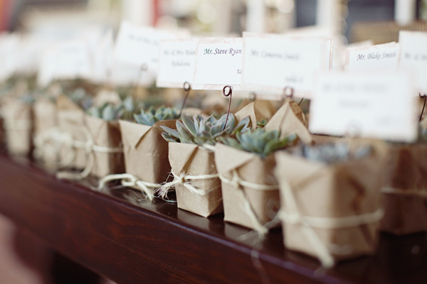 Your Guests Will Bring The Favors Back Home And Keep Them For A Very Long Time Therefore Those Potted Plants Be Best Choices As Wedding