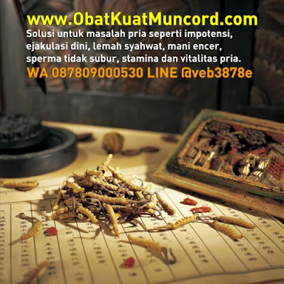 cordyceps obat kuat dari tiens bahan herbal alami dari negeri tiongkok cina