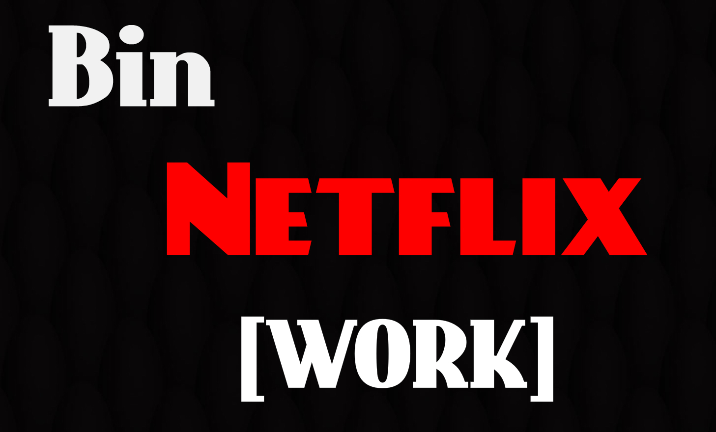 Netflix Accounts Premium 2018-2019 (Bin Methode) - AnonyBosse