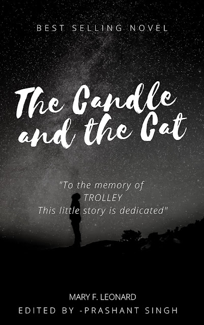 The Candle and the Cat