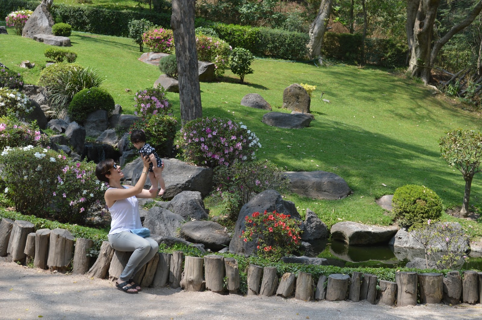 Jardin japones viva la montes for Jardin japones 2016