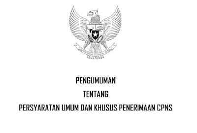 Persyaratan Umum Khusus CPNS 2019