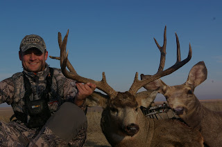 muley buck taken with mule deer decoy