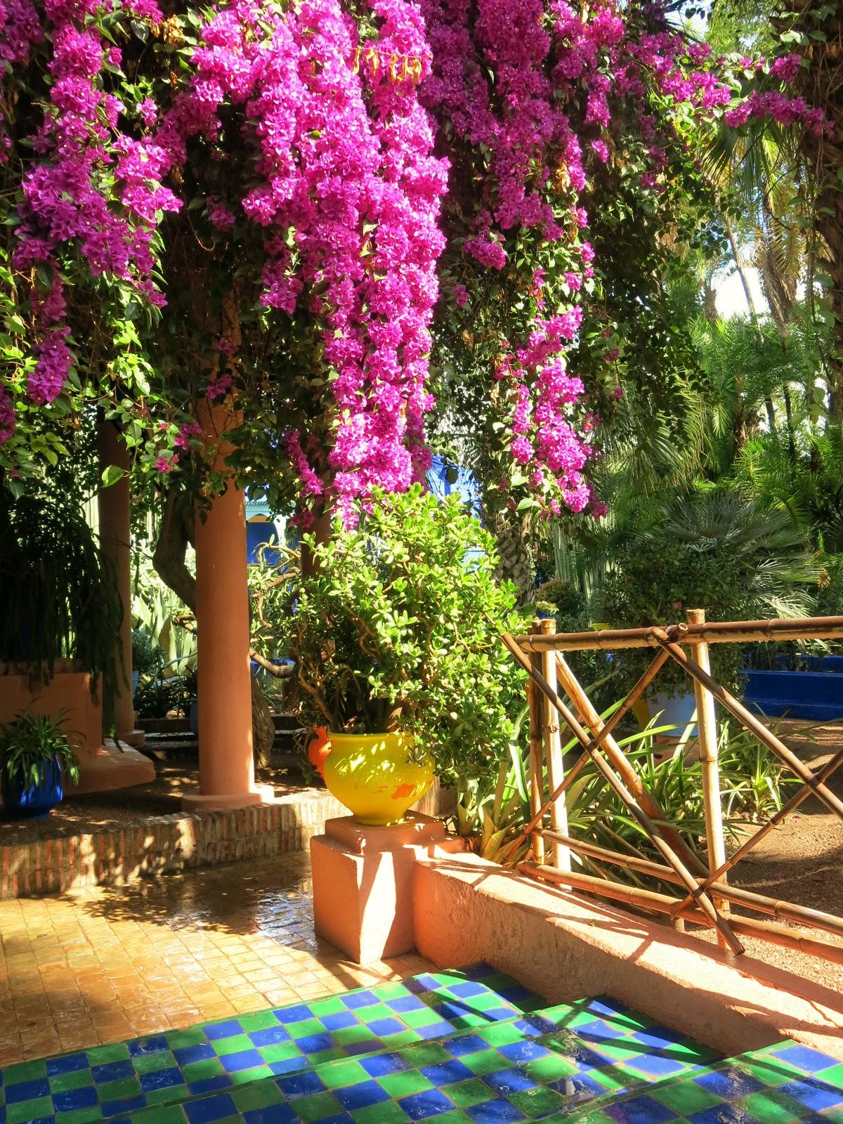 Trädgården Jardin Marjorelle i Marrakesh i Marocco