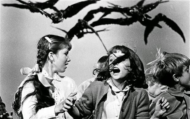 The bird 1963
