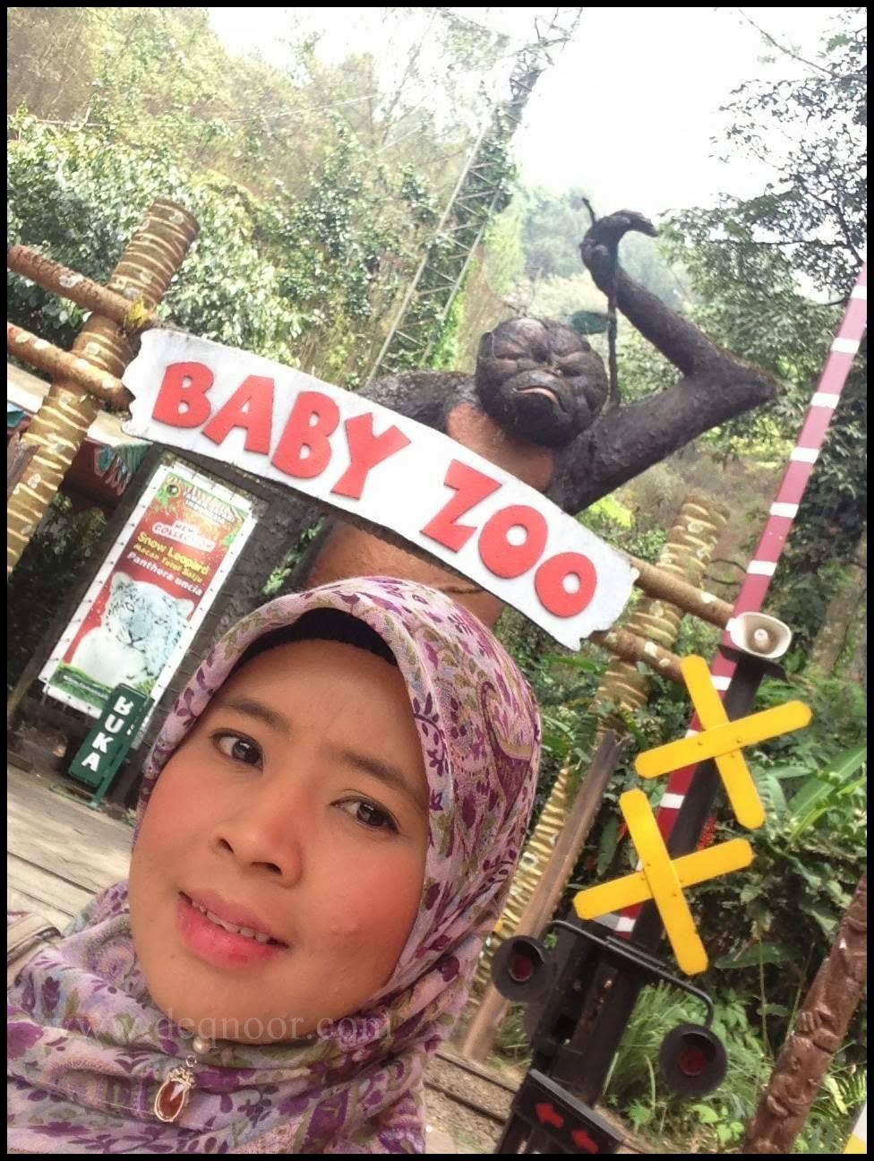 Baby Zoo Taman Safari Indonesia