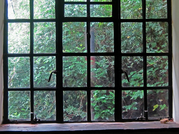 Inspiring Story: Looking Through the Window